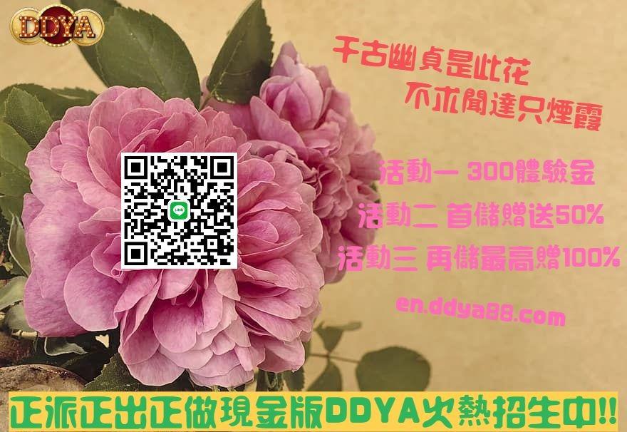 DDYA娛樂城火熱招生中